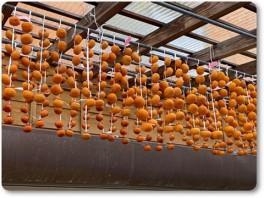 干し柿を作る岩井店長-02